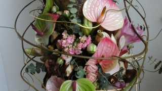 Bloemenspeciaalzaak Prima Flora V.O.F.